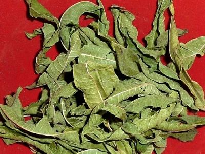 Lemon Verbena, whole leaves