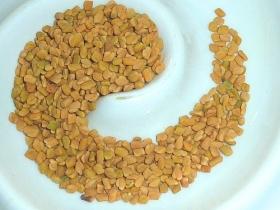 Fenugreek, seeds