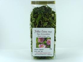 Pink rockrose, herb cut