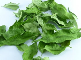 Curry Leaves, whole, Algarve